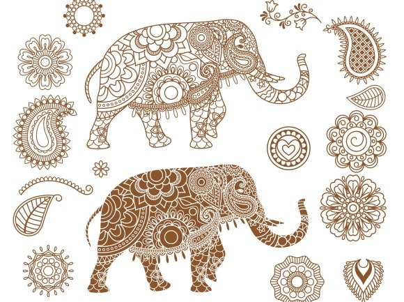 Elephant With Mehendi Patterns