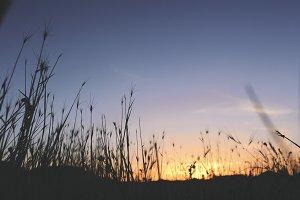 Vintage Sunset #2