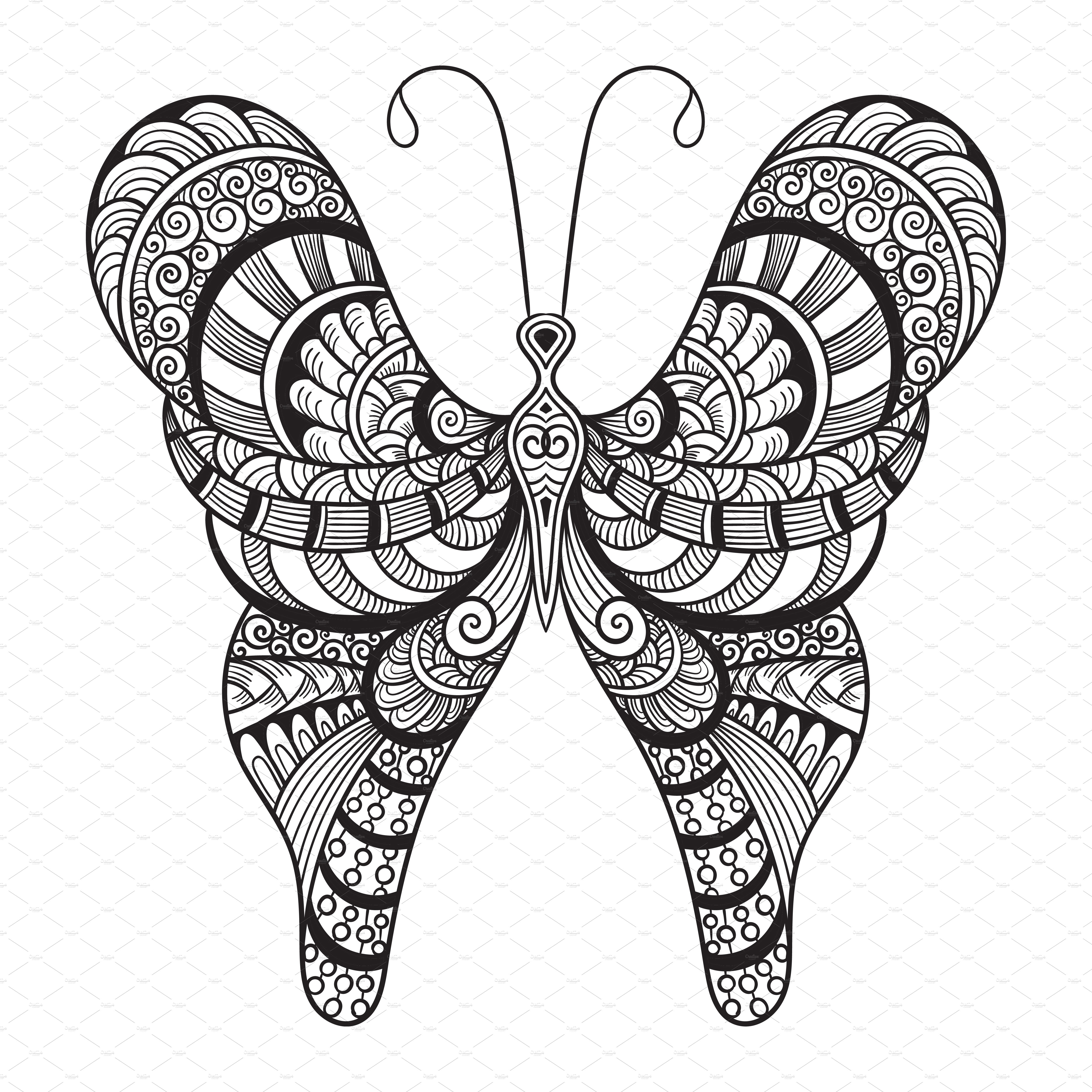Vector Doodle Butterfly Illustrations Creative Market