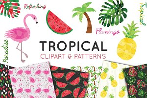 Tropical Clipart and Pattern Bundle