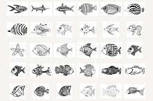 47 Vector Fishes