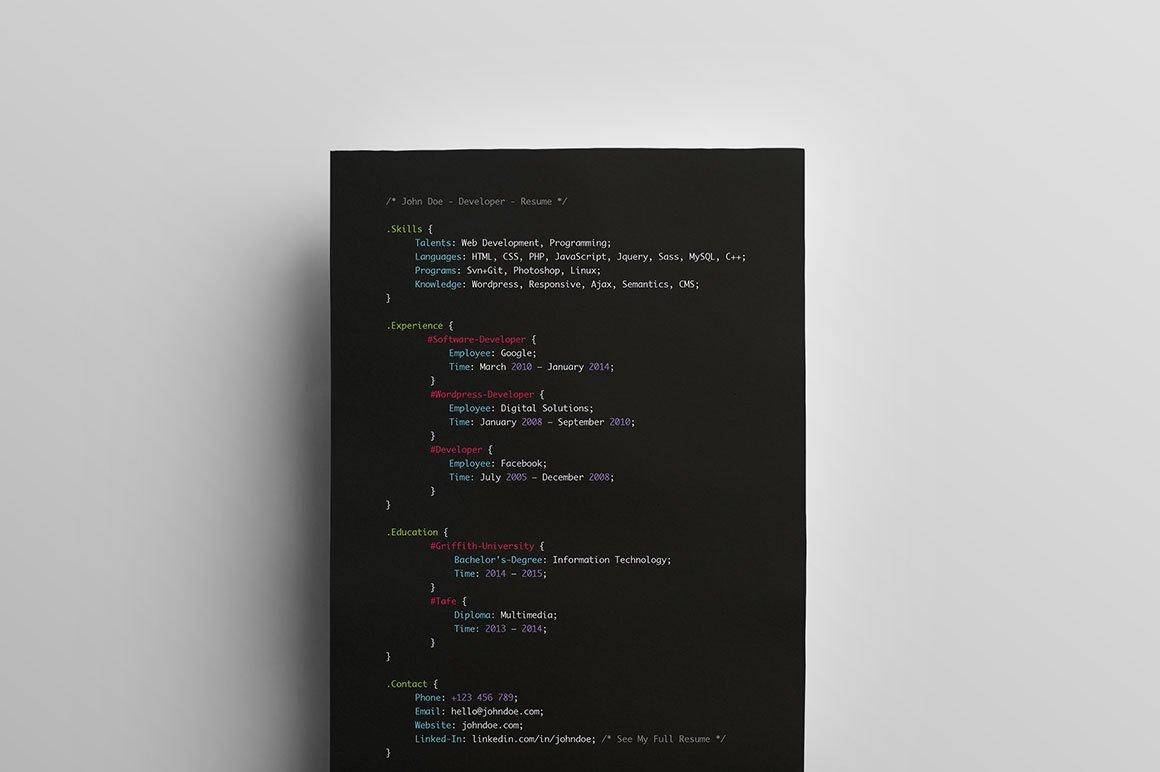 Developers Resume ~ Resume Templates ~ Creative Market