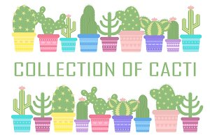 Collection of cacti - vector, JPG