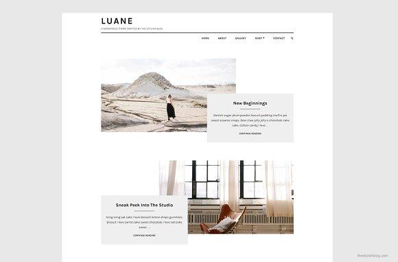 Luane - Minimalist WordPress Theme