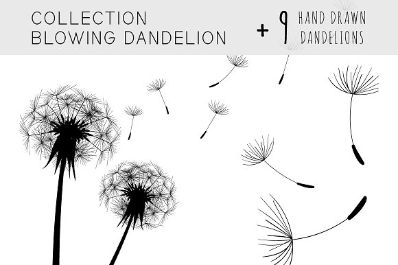 Collection Blowing Dandelion Illustrations Creative Market