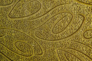Ornamental golden cloth texture