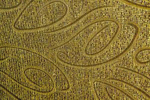 Ornamental golden cloth texture
