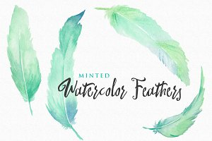 Minted Watercolor Feathers