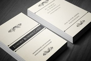 Classic Luxury Business Card 3 in 1