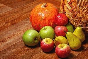 Apple, pear, pumpkin. Harvest