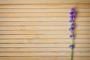 Lavender on wooden texture.
