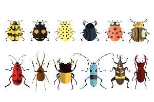 Vector bugs