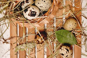 Quail eggs in basket. Weight loss.