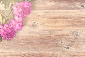 Daylight Flowers on Rustic Wood
