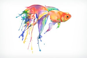 Watercolor painting, goldfish