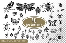Hand-drawn ink insects and patterns