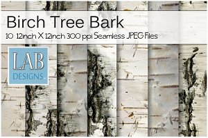 10 Birch Tree Bark Textures