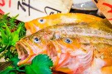 Fresh raw fish in Japanese market