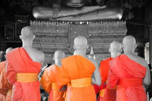 Thai Monk Color Splash tone