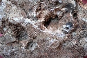 sedimentary rock
