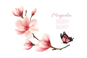 Beauty Pink Magnolia Branch