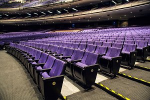 Rows of purple cinema
