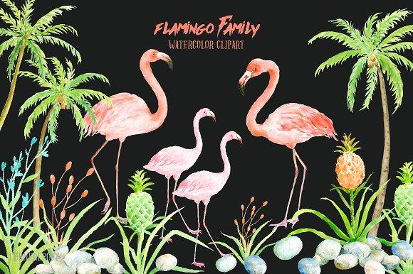 Watercolor Clip Art Flamingo Illustrations Creative Market