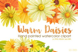 Warm Color Daisy Florals