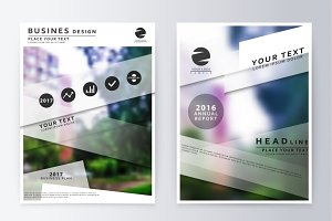 Annual report brochure.
