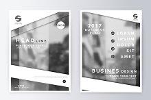 Annual report brochure.