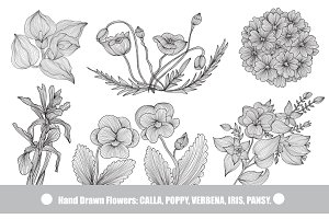 Hand Drawn Decorative Flowers (2)
