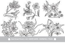 Hand Drawn Decorative Flowers (3)