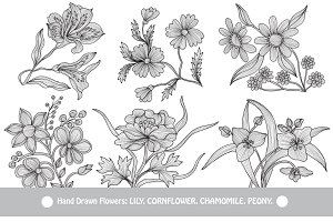 Hand Drawn Decorative Flowers (3)
