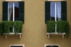 European windows