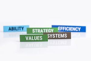 Business Strategy Values