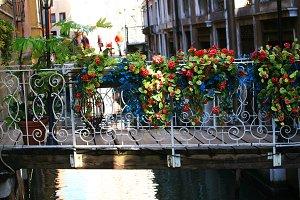 Beautiful Bridge With Flowers,Venice
