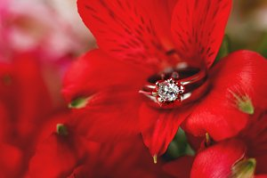 Wedding rings in red flower