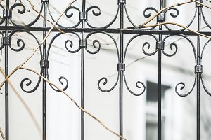 Metal ornamental fence and house