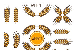 Design elements with wheat.