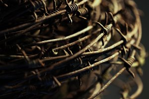 Twisted barb wire