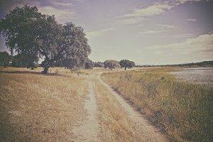 Vintage Ground Road