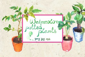 Watercolor potted spring seedlings
