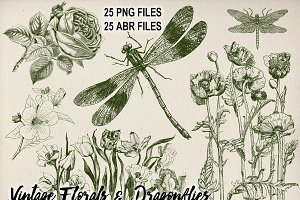 Vintage Floral & Dragonflies Brushes