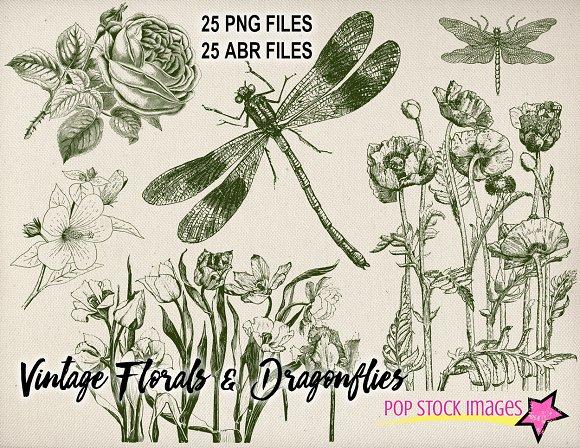 Vintage Floral & Dragonflies Brushes