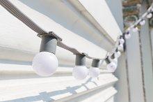 Small bulbs in a row