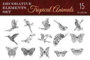Tropical Wild. Birds, Butterflies.