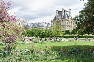 Louvre palace and Tuileries garden spring day view in Paris, France