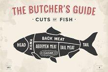 Cut of meat set. Butcher sheme. Fish
