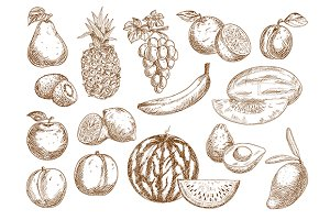 Farm fruits isolated sketches set