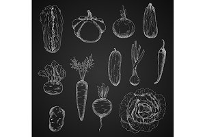 Chalkboard sketched vegetables